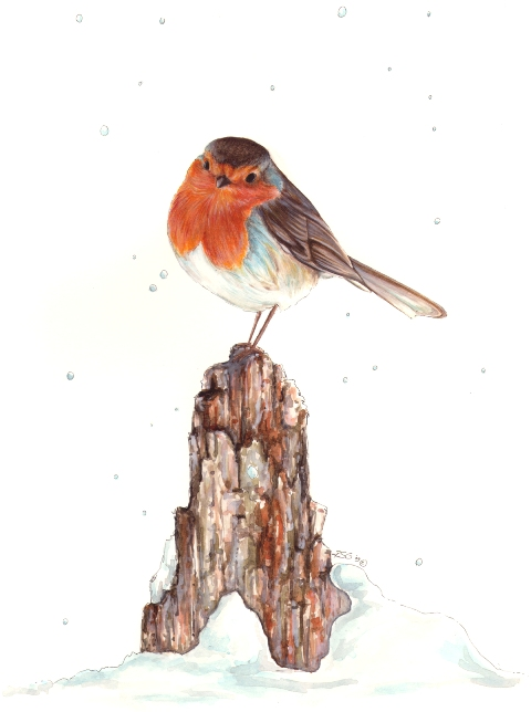 Robin , Rebecca Griffiths